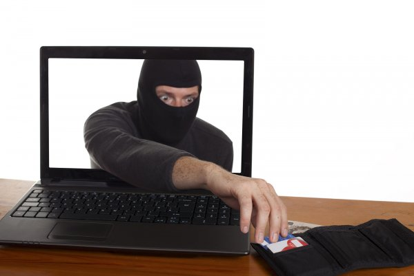 МВД попросило блогеров безвозмездно бороться с интернет-мошенниками