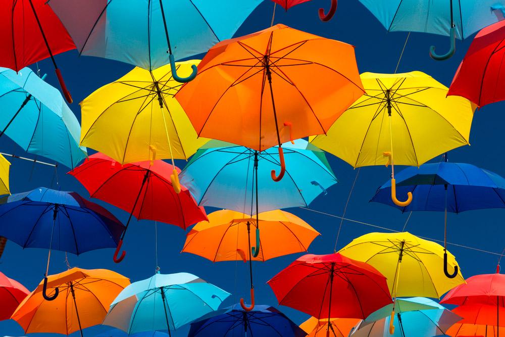 Зонт трость по выгодной цене